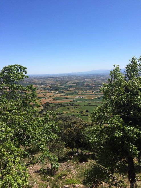 Drive-Into-Rioja-View