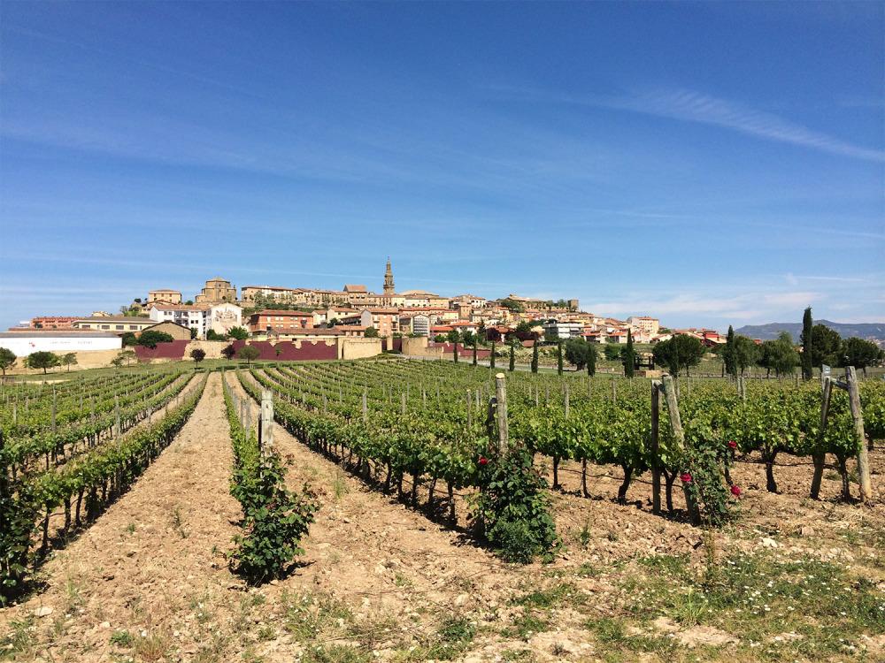 Rioja-Featured