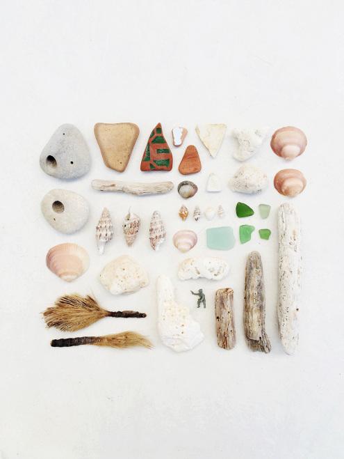 Shells-Menorca