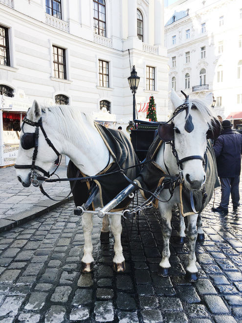The_Baguettenbergers_Vienna_Austria_Michaelerplatz_Horses